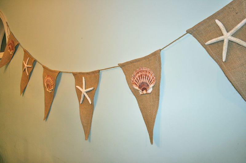 Summer Seastar Banner