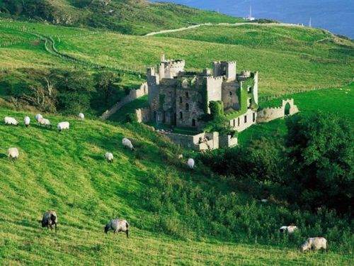 Ploaded-by-Duane1947--category-tags_-castle--sheep--ireland--landscape-landscape--castle--ireland--sheep--photo--Castles-Around-the-World--Castles_large