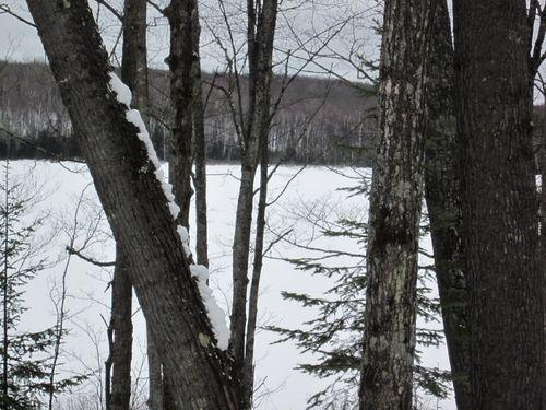 Cabin winter11' 083 (800x600)